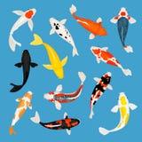 Koi carp fishes set stock illustration