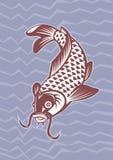 Koi carp swimming down Royalty Free Stock Photos