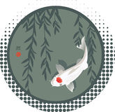 Koi carp and willow branches Royalty Free Stock Photos