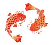 Koi carps Stock Photography