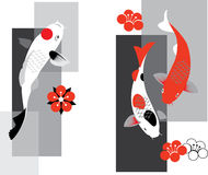 Koi carps Stock Images