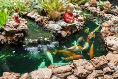 Koi Carps Fish simning i dammet på Wat Borom Raja Kanjanapisek W Royaltyfri Foto