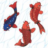 The koi carps. Vector illustration. Hand drawing for printing Stock Images