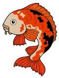 Koi fish. On white background -  illustration Royalty Free Stock Photos