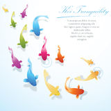 Koi Fish Background. Koi fish tranquility concept company background Royalty Free Stock Images