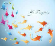 Koi Fish Background. Koi fish tranquility concept company background Royalty Free Stock Photo