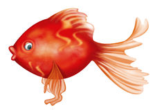 Koi Fish Character Design ilustración del vector