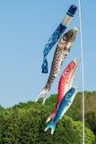 Koi Fish Flags voor de Dag van de Jongen Royalty-vrije Stock Fotografie