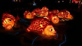 Koi Fish Handmade Chinese Lantern Imagen de archivo libre de regalías