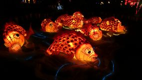 Koi Fish Handmade Chinese Lantern Immagine Stock Libera da Diritti