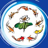 Koi Fish Lotus. Caligraphy Eight Koi Fish Around the Lotus Flower Stock Image