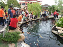 Koi fish pond. Anonymous families gather around the pond during their visit to chinese new year event at FGS, Jenjarom Malaysia, February, 2010 stock photos