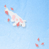 Koi fish in the pool with maple leaf Royalty Free Stock Image
