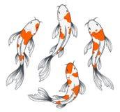 Koi Fish Set Arkivfoton