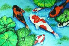 Koi fish swiming in water painting Stock Photography