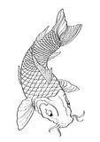 Koi fish Tattoo Japanese style lined pattern Royalty Free Stock Images