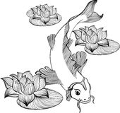 Koi fish with three flowers. Of lotus created in Line Art Stock Photography