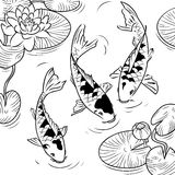 Koi-fish. Three koi-fish and water-lilys on a white background Stock Image