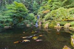 Koi Fish in Watervalvijver bij Japanse Tuin Royalty-vrije Stock Foto
