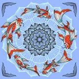 Koi fishes and lotus flower Stock Photos