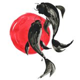 Koi fishes and red sun in Japanese style. Watercolor illustration. Koi fishes carps and red sun in Japanese painting style. Traditional ink, hand drawn Royalty Free Stock Photo