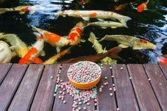 KOI Food y Koi Pond Fotografía de archivo libre de regalías