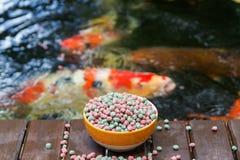 KOI Food y Koi Pond Fotografía de archivo