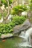 Koi pond Royalty Free Stock Photos