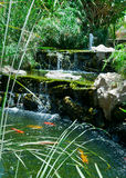 Koi Pond. A luxurious tiered koi pond with a fountain and waterfalls royalty free stock photography