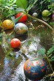 Koi Pond. Peaceful koi pond nestled among other tropical plants Stock Images