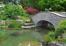 Koi Pond Stockbilder