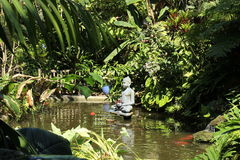 Koi pond, Buddha staute and lush green foilage at Shelby Gardens. Beautiful lush green foliage at the koi fish pond with a Buddha statue at Shelby Gardens in stock images