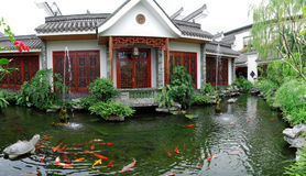 Koi pond garden. Traditional house with the koi pond stock images
