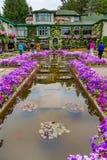 Koi Pond no jardim imagem de stock royalty free
