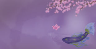 Koi In Purple. Koi on purple background with cherry blossom Royalty Free Stock Photo
