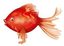 Koi ryba charakteru projekt Obraz Royalty Free