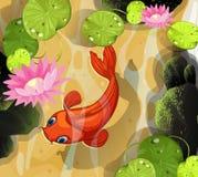 Koi simning i dammet stock illustrationer