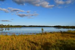 Koigi bog in Saaremaa, Estonia. Beautiful Koigi bog with a lake in Saaremaa, Estonia Stock Photo