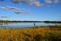 Koigi bog in Saaremaa, Estonia. Beautiful Koigi bog with a lake in Saaremaa, Estonia stock photo