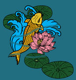 Koii fish vector,swiming on river Stock Photography
