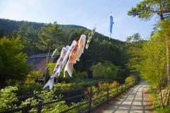 Koinbori vicino al monte Fuji Fotografia Stock Libera da Diritti