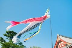 Koinobori: Japanische Karpfenausläufer, die über Senso-jitempel in Tokyo, Japan fliegen lizenzfreie stockfotos