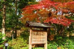 Koishikawa后乐园庭院在秋天在东京 免版税图库摄影
