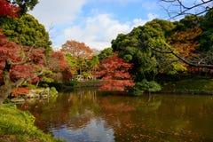 Koishikawa后乐园庭院在秋天在东京 免版税库存照片