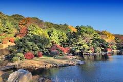 Koishikawa Botanische Tuinen stock fotografie