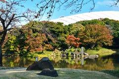 Koishikawa Kōrakuen Garden of Tokyo, Japan, During Autumn royalty free stock image