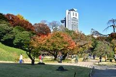 Koishikawa Kōrakuen Garden of Tokyo, Japan, During Autumn royalty free stock images