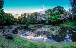 Koishikawa KÅ 在东京rakuen庭院 免版税图库摄影