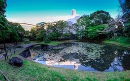 Koishikawa KÅ  rakuen Tuin in Tokyo Royalty-vrije Stock Fotografie