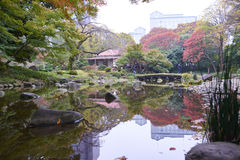 Koishikawa Korakuen Garden Royalty Free Stock Photo